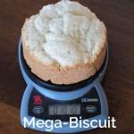 Meg Biscuit